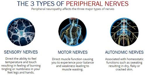Nerventrax benefits