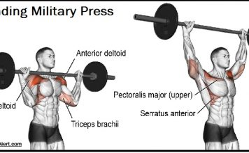 standing military press